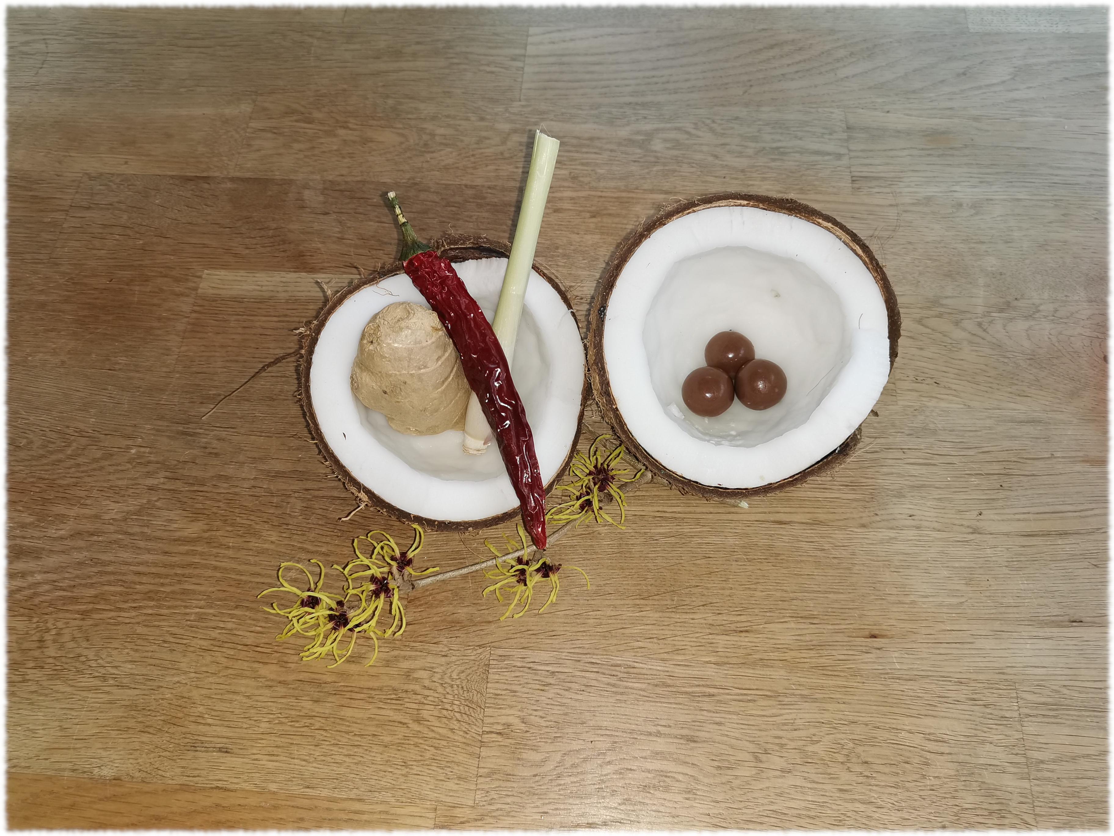 zwei Kokosnuss-Hälften auf einem Holztisch, eine gefüllt mit Schokokugeln, eine gefüllt mit einer Chili-Schote, Ingwer und Zitronengras, davor ein Zaubernusszweig